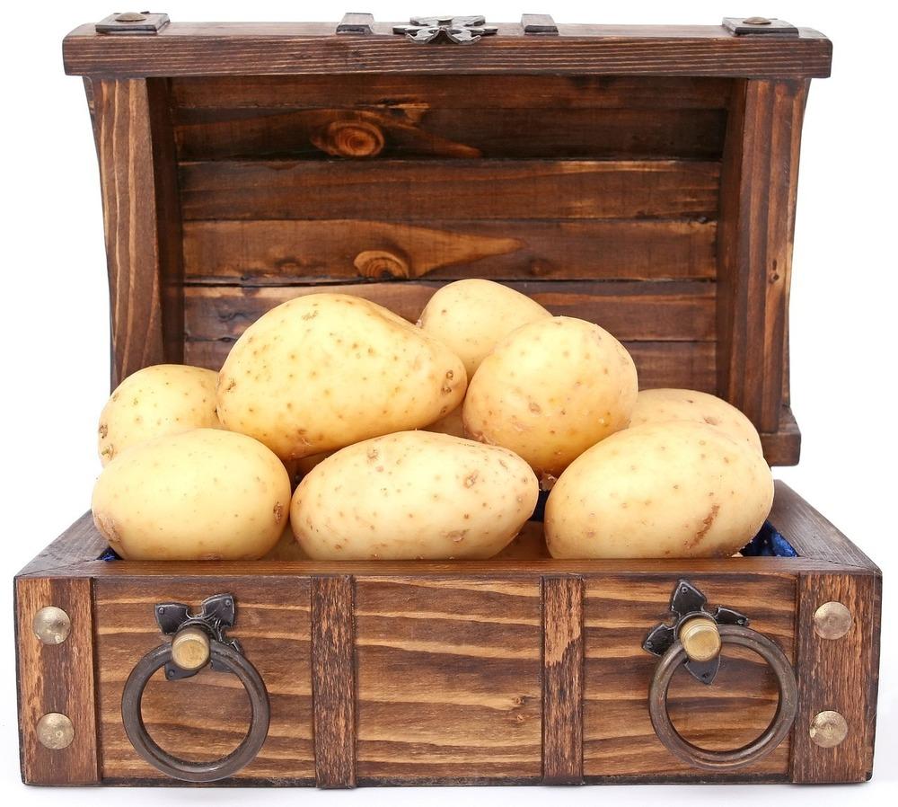 Количество калорий в картошке